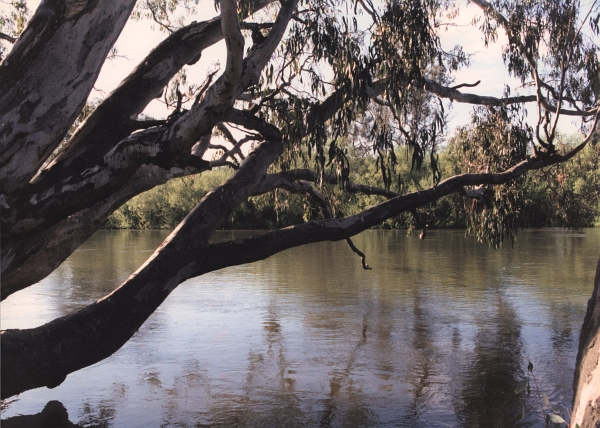 Murray River, Albury