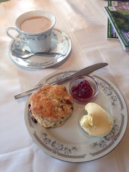 The Tearoom at Tresillian Garden Centre - Cornish cream tea