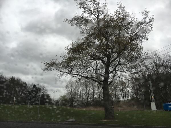 rain at Scotch Corner