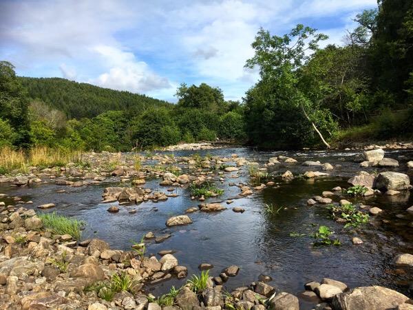 River Enrick